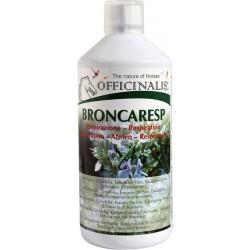 Complemento alimenticio OFFICINALIS® Broncaresp Eucalyptus