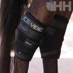 PROTECTOR HORSEWARE ICE-VIBE (SET COMPLETO) CORVEJON