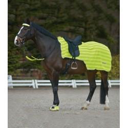 Manta riñonera para caballo Reflex de WALDHAUSEN