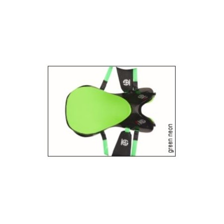 Silla de Raid Full Carbon de HG ASC (Asiento Completo)