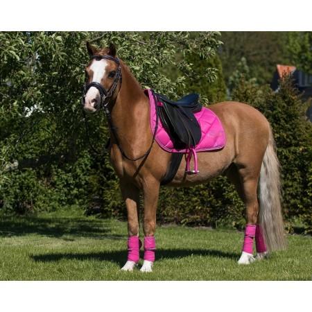 Vendas Pegasus para Poni de QHP
