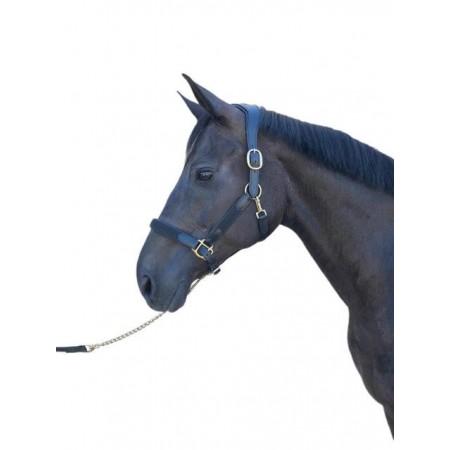 Cabezada de Cuadra Olimpia Star de Sport&Horse
