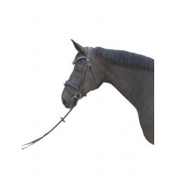 Cabezada de Montar Olimpia Fix de Sport&Horse