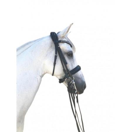 Cabezada de Doble Rienda Olimpia Dressage Line de Sport&Horse