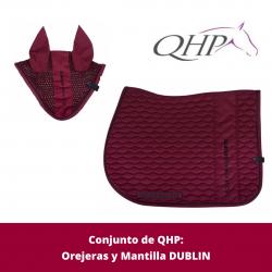 Conjunto Dublin de QHP