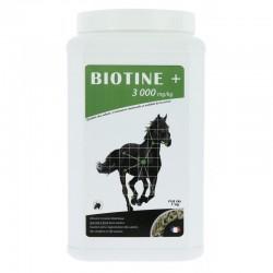 Biotina 3000 de ODM
