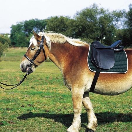 Silla de montar para caballo de tiro de Excelsior