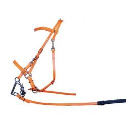 Cabezada montar endurance fluro sintética