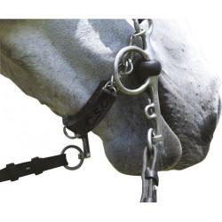 Protector de barbada caballo C.S.O. Gel