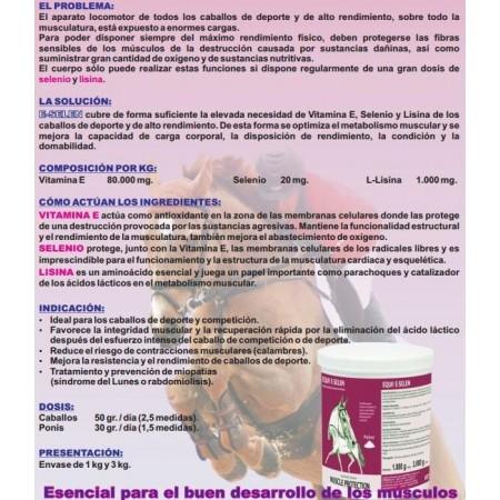 Equi 2000 E-Selen, para optimizar el metabolismo muscular del caballo