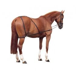 Sistema combinado para caballo