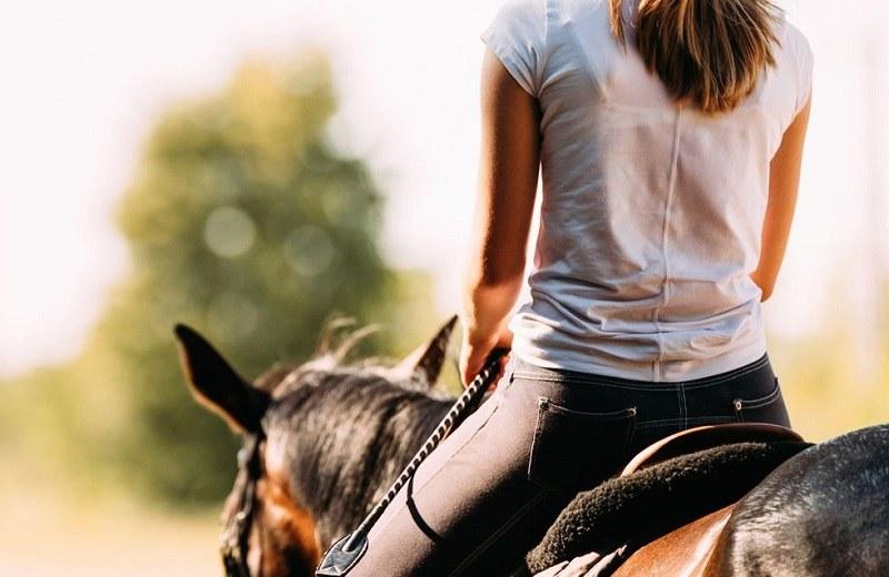 Posturas, equilibrio y coordinación en la equitación